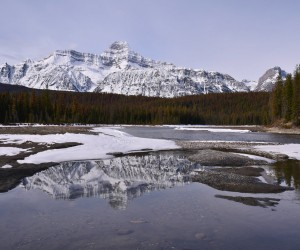Mt Christie From The Athabasca River