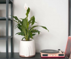 NATEDE: Smart Natural Air Purifier