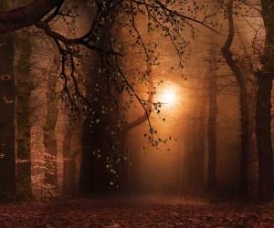 Nature Photography by Micaela M.Bayon