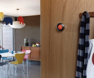 Nest Protect and Learning Thermostat