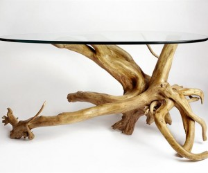 New life for driftwood and unique furniture  Giovanni Angelozzi