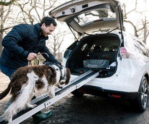 Nissan X-Trail 4Dogs, The Best Car For Dog Lovers