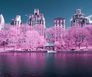 NYCxIR: Ryan Berg Captured Stunning Photos of New York City in Infrared