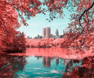Paolo Pettigiani Infrared New York City