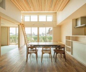 Parent and Child House by Miyamato Architect Atelier