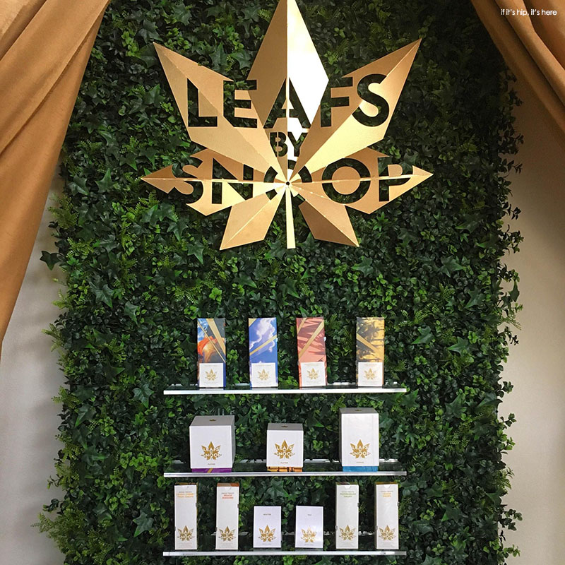 Image result for snoop dogg leafs by snoop