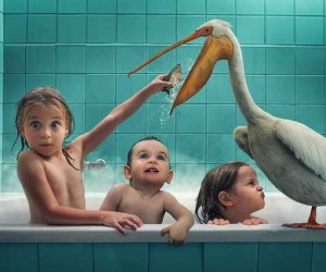 Photo Manipulations by John Wilhelm