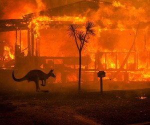 Photographer Matthew Abbott Documents Australias Bushfire Crisis