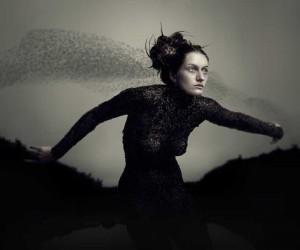 Photography by Bear Kirkpatrick