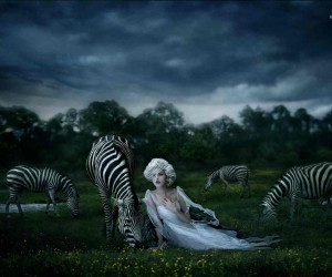 Photography by Jessica Drossin