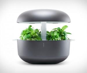 Plantui Smart Garden