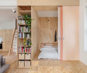 Plywood-covered 75 sqm Apartment by Clare Cousins