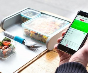 Prepd Pack: The Lunchbox Reimagined