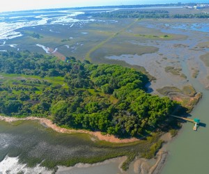 Private Island in South Carolina on Sale for 29 Million