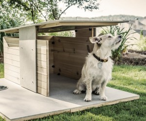 Puphaus Dog House by Pyramd Design