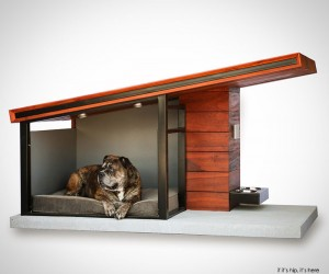 RAH:Design MDK9 Dog Haus