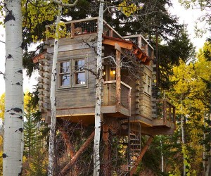 Remarkable Colorado Mountain Treehouse by Missy Brown Design