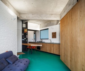 Remodeling a Small Apartment to add Visual Amplitude