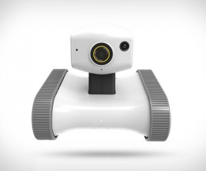 Riley Home Monitoring Robot