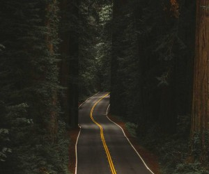 Roadtripping Oregon: A Visual Journey Through Oregon by Julia Nimke
