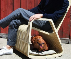 Rocking-2-Gether Chair: Rocking Chair For You and Your Pet