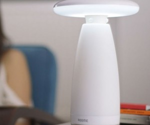 Roomie: Motion Detecting Smart Lamp