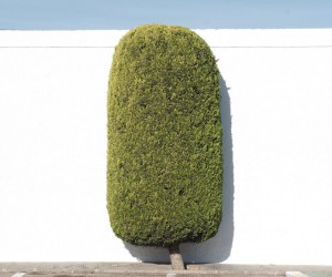 Rural Spain: Minimalist Landscape Photography by David Mirete