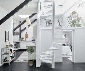 Scandinavian Loft with Skylights