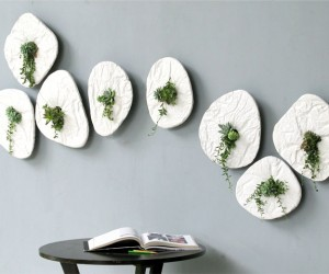 SEED - Wall Art  Plants