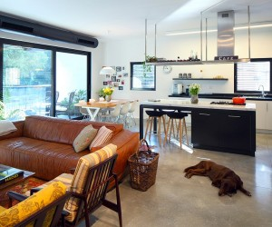 Smart Renovation Combines Two Apartments Into One