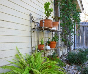 Spring Yardwork Tips for a Fresh Start