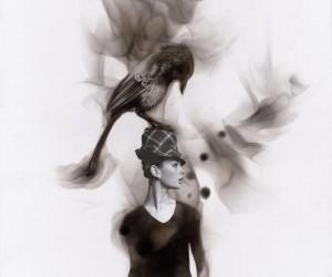 Steven Spazuk Uses Fire to Paint Birds