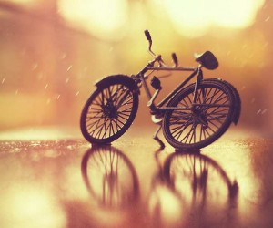 Still Life Photography by Arefin Ashraful