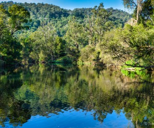 Stunning reflection of Oxley River in northern NSW, Australia