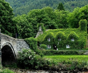 Sweet Stone Cottages for Hermit Wannabes