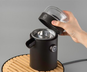 Teamosa: Personal Tea Brewing Device