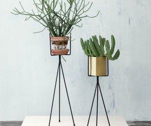 The 10 Best Standing Planter Options for Your Interior