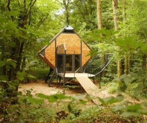 The bird nest house eco cabin, Lorraine, France
