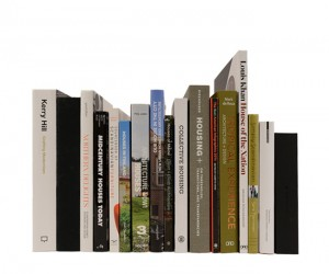 The BUILD Blog | Architectural Book Reviews