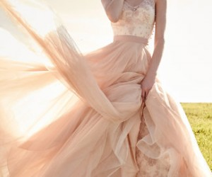 The Most Popular Wedding Dress Trends of the Season