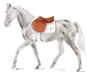 The new Herms Allegro saddle