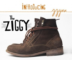 The Ziggy