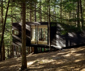 Tiny Blackened Timber Cabin in a Forest in Upstate New York
