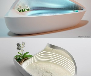Two Tubs For People and Their Plants