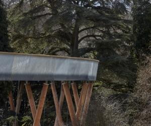UKs Longest Treetop Walkway Opens at Westonbirt Arboretum