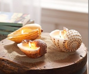 Unconventional Crafts Involving Sea Shells