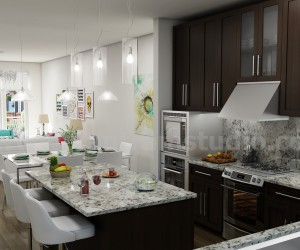 Unique Kitchen-Living Render from Interior Design Firm - Miami, USA