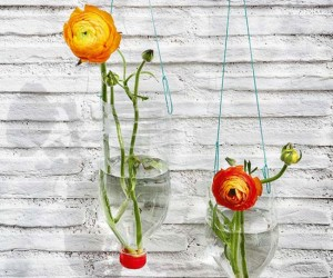 Upcycle Everyday Kitchen Items to Create Modern Planters