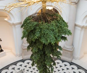 Upside-down Christmas Tree at Tate Britain