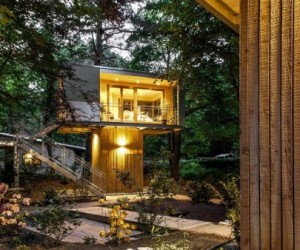 Urban tree house vacation homes